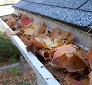 cleaning gutters portland