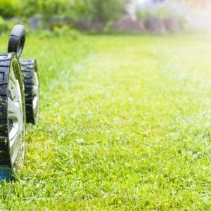 spring lawn care portland oregon