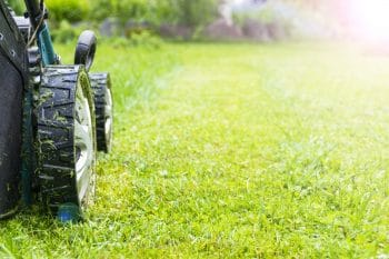 spring lawn care portland oregon