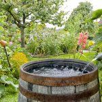 Rain Barrels, Rain Gardens for your Portland Home